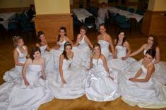 Školní ples 2012